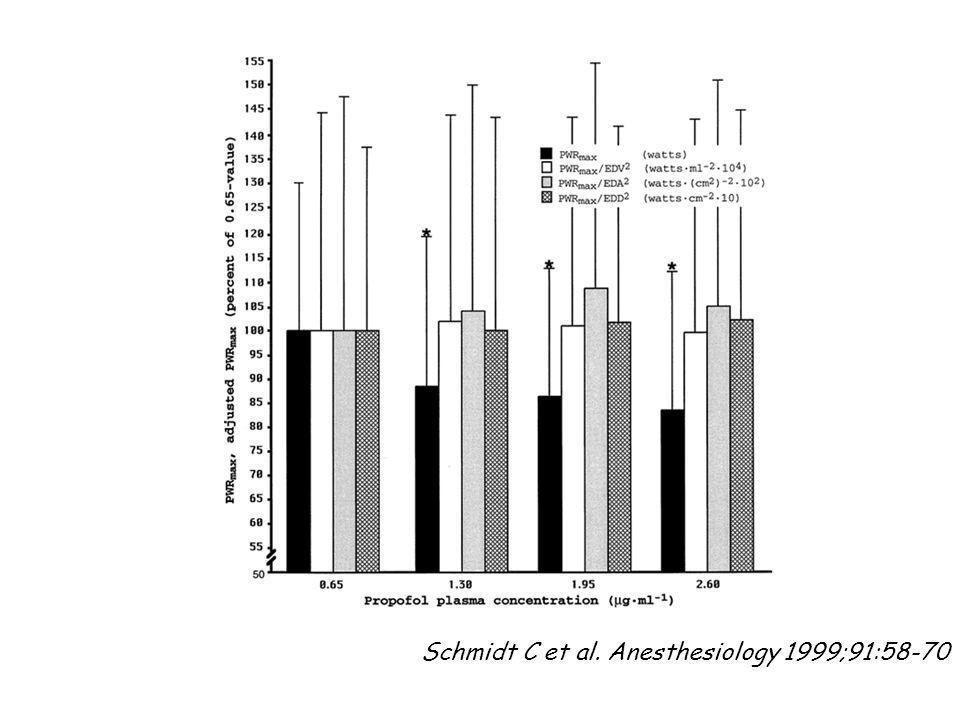 Schmidt C et al. Anesthesiology 1999;91:58-70