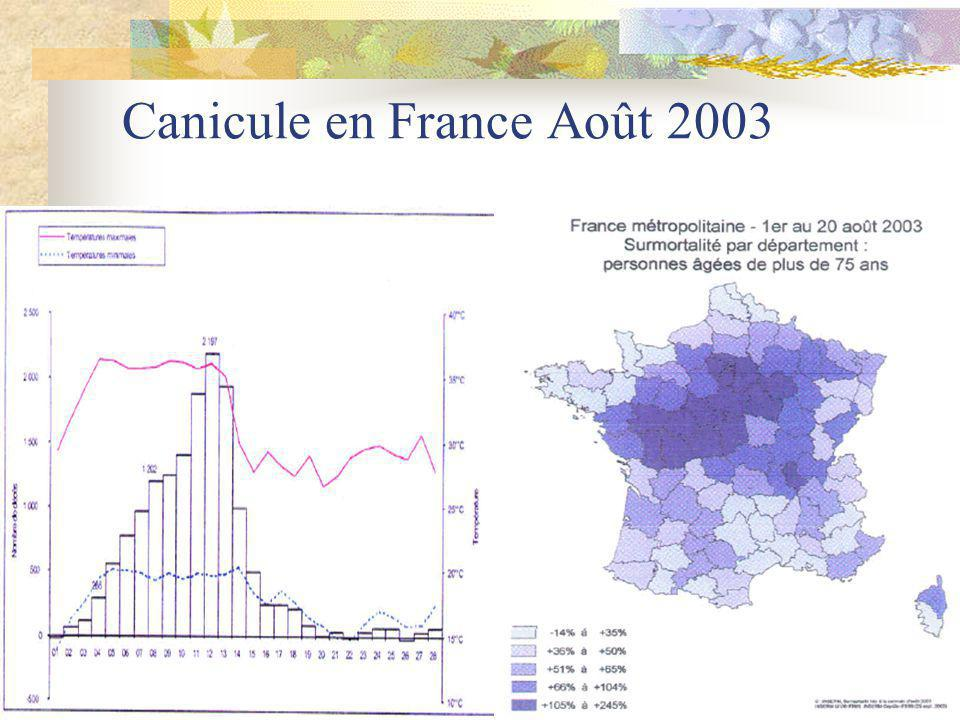 Canicule en France Août 2003
