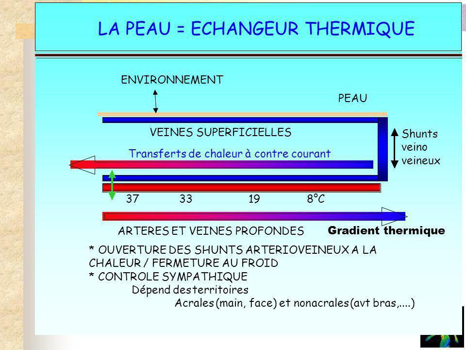 La peau- échangeur thermique