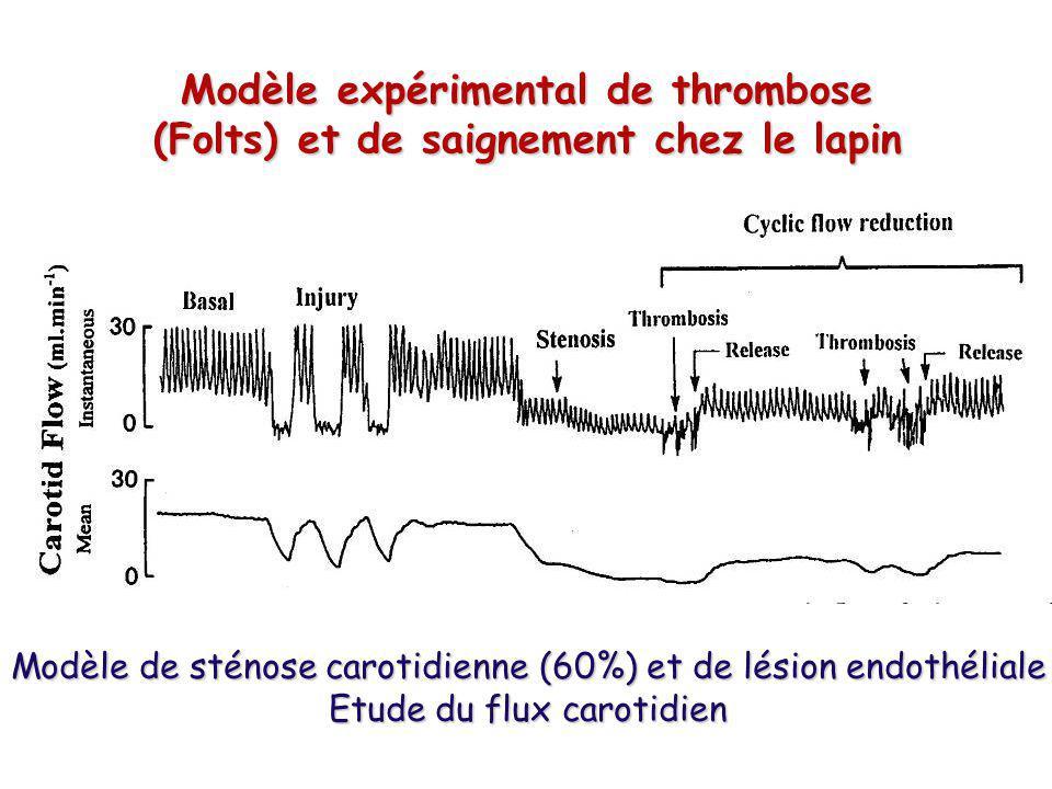 Modèle expérimental de thrombose (Folts) et de saignement chez le lapin