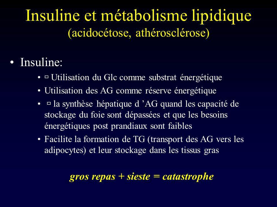 Insuline et métabolisme lipidique (acidocétose, athérosclérose)