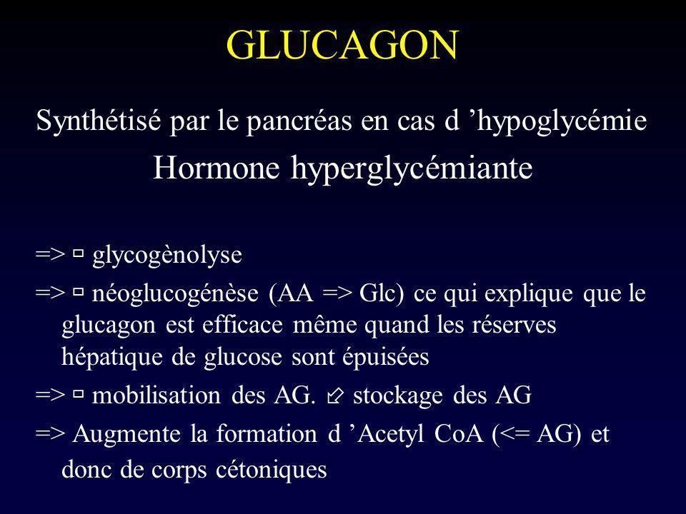 Hormone hyperglycémiante