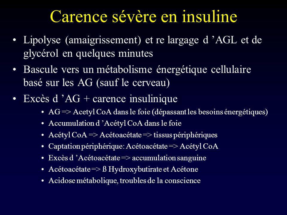 Carence sévère en insuline