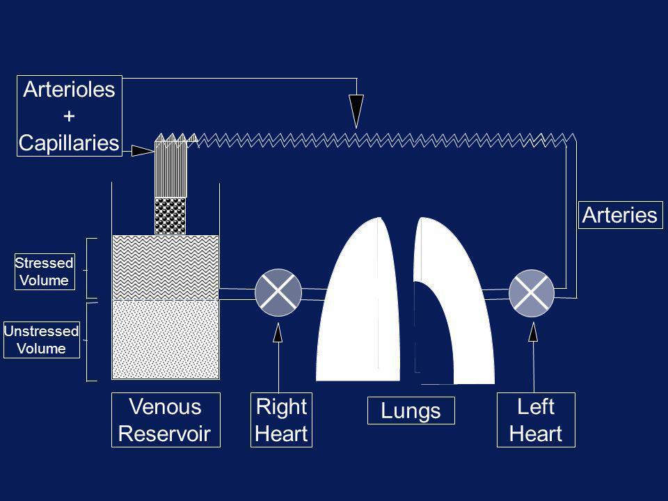 Arterioles + Capillaries Arteries Venous Reservoir Right Heart Lungs
