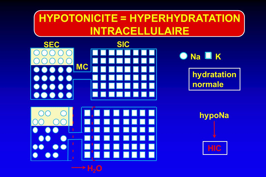 HYPOTONICITE = HYPERHYDRATATION INTRACELLULAIRE