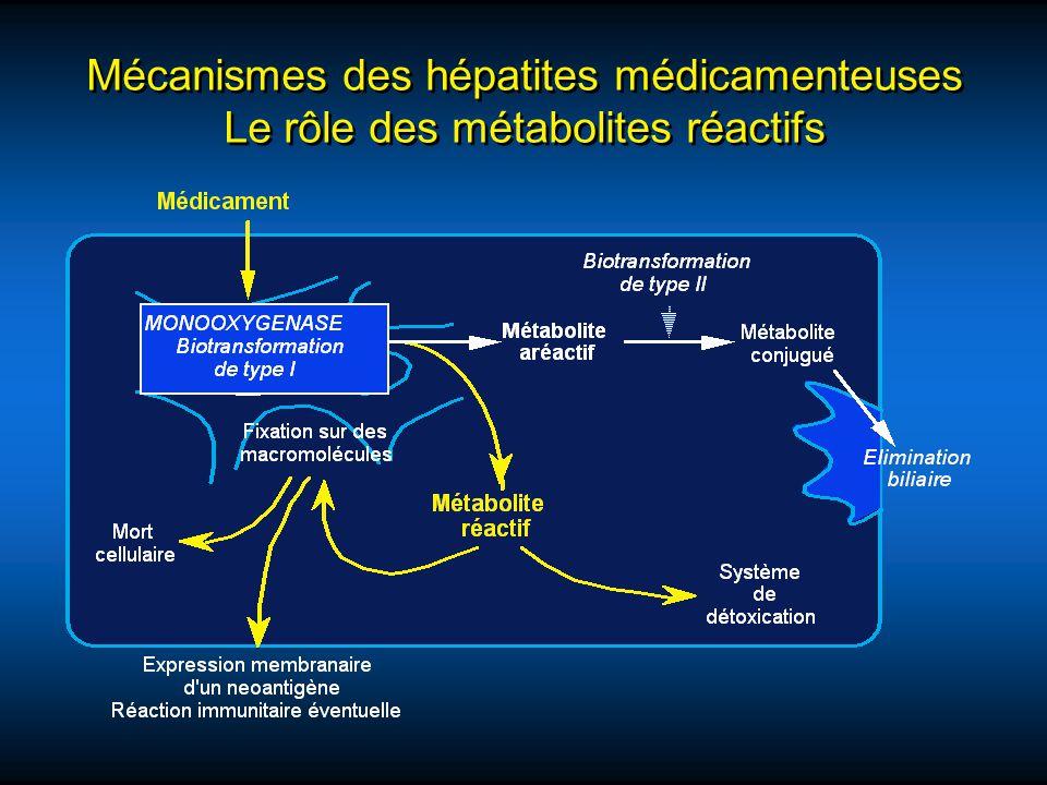 Mécanismes des hépatites médicamenteuses Le rôle des métabolites réactifs