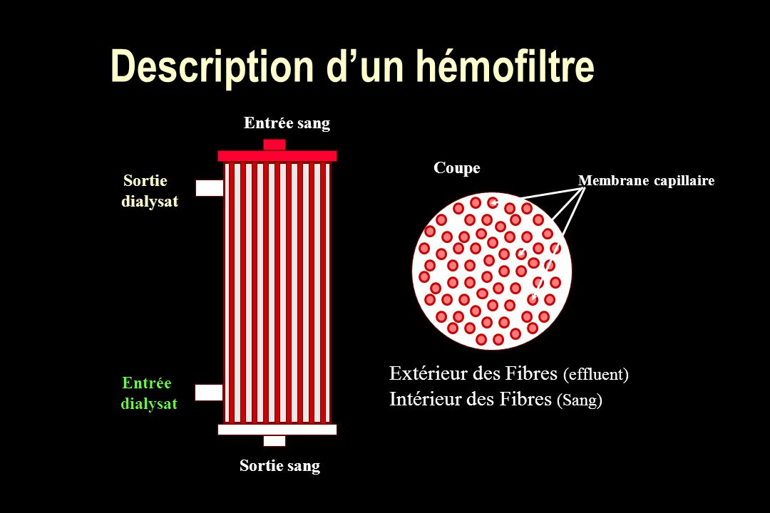 Description d'un hémofiltre