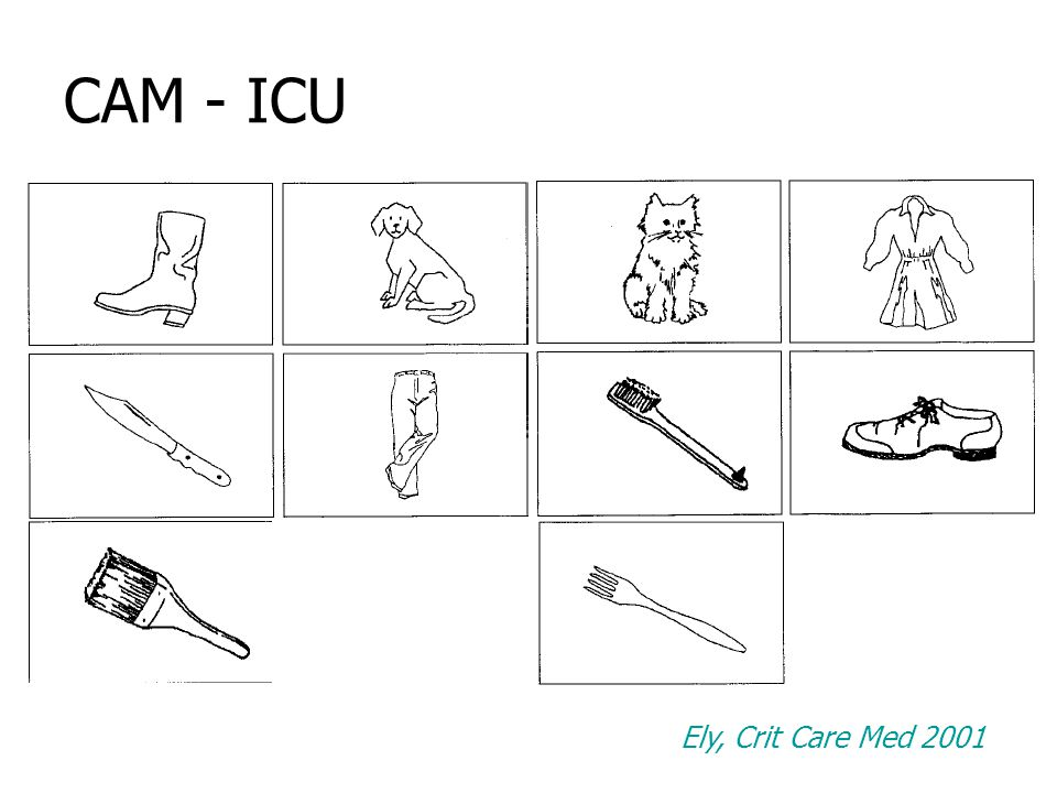 CAM - ICU Ely, Crit Care Med 2001