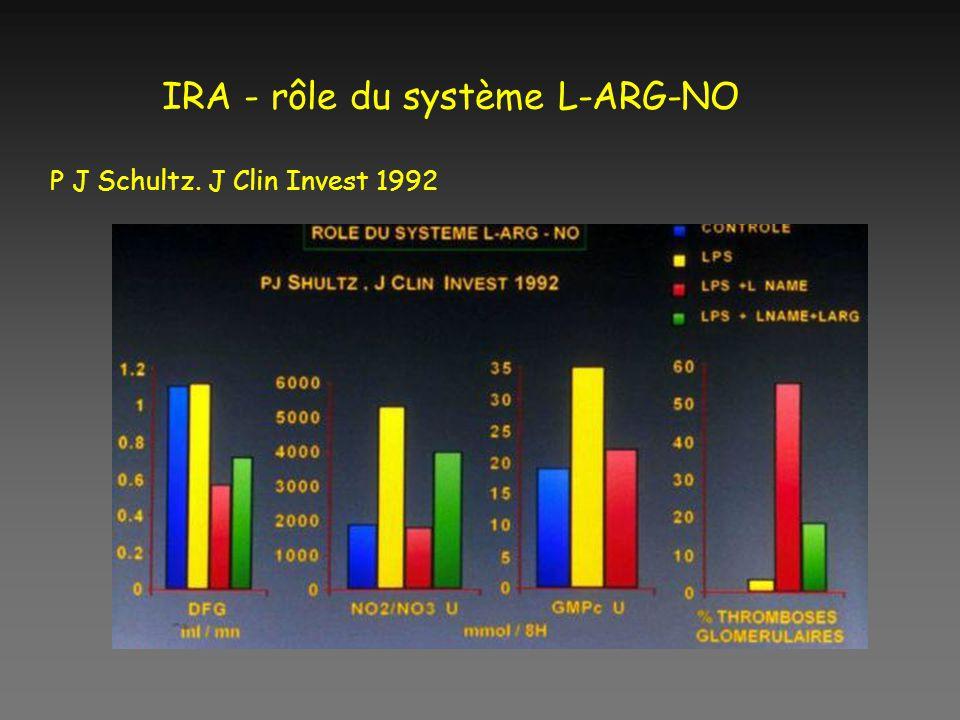 IRA - rôle du système L-ARG-NO