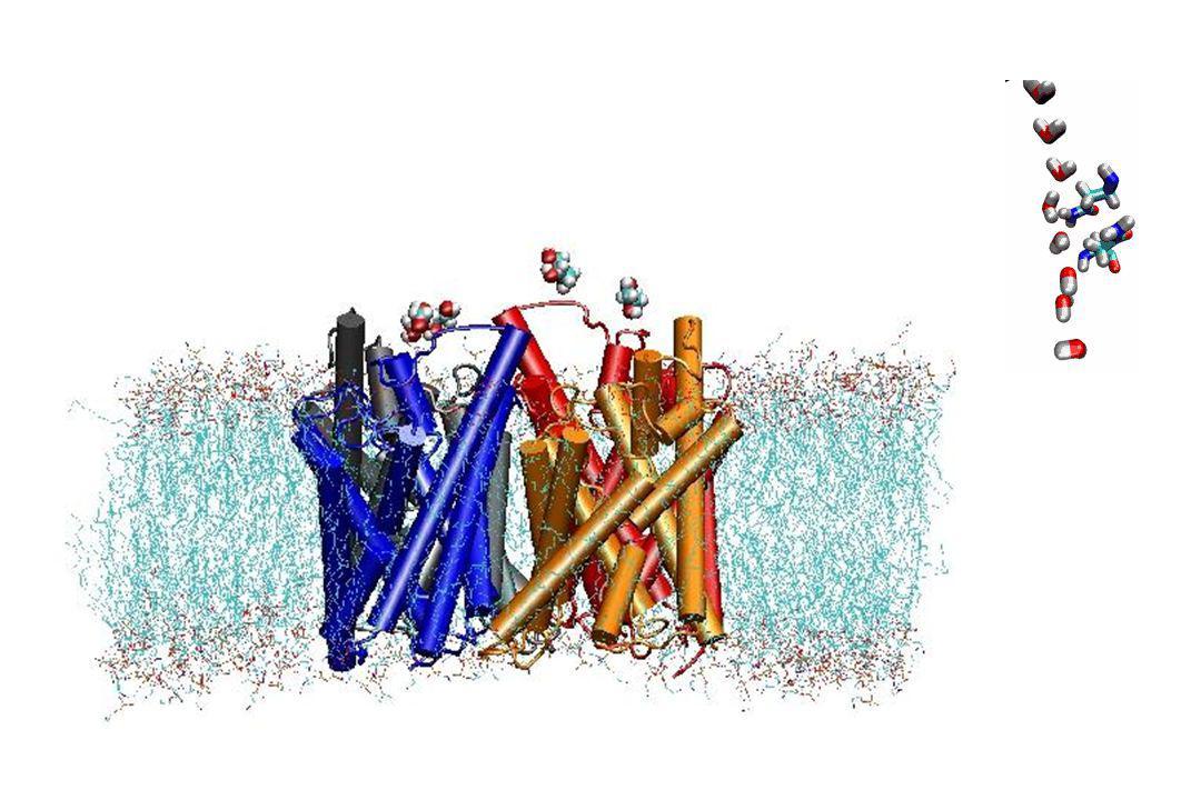 L'énergie « intrinsèque » des ions :