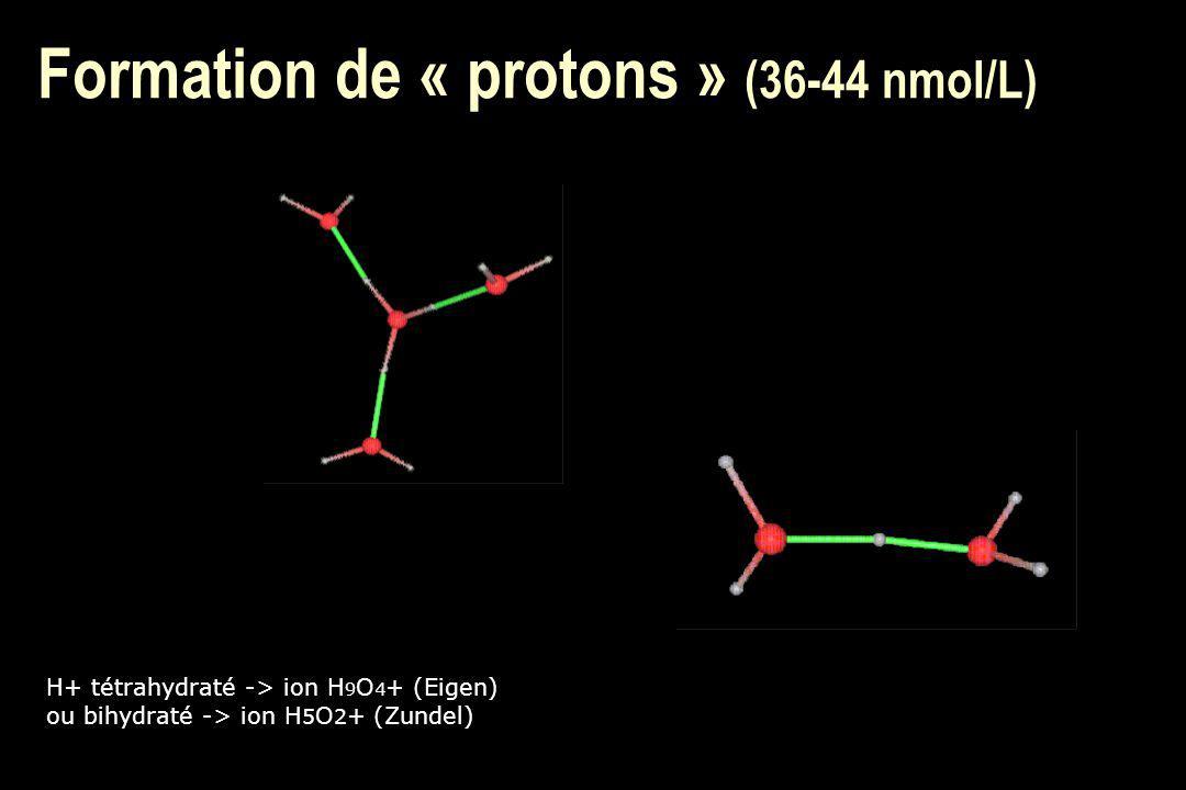 Formation de « protons » (36-44 nmol/L)