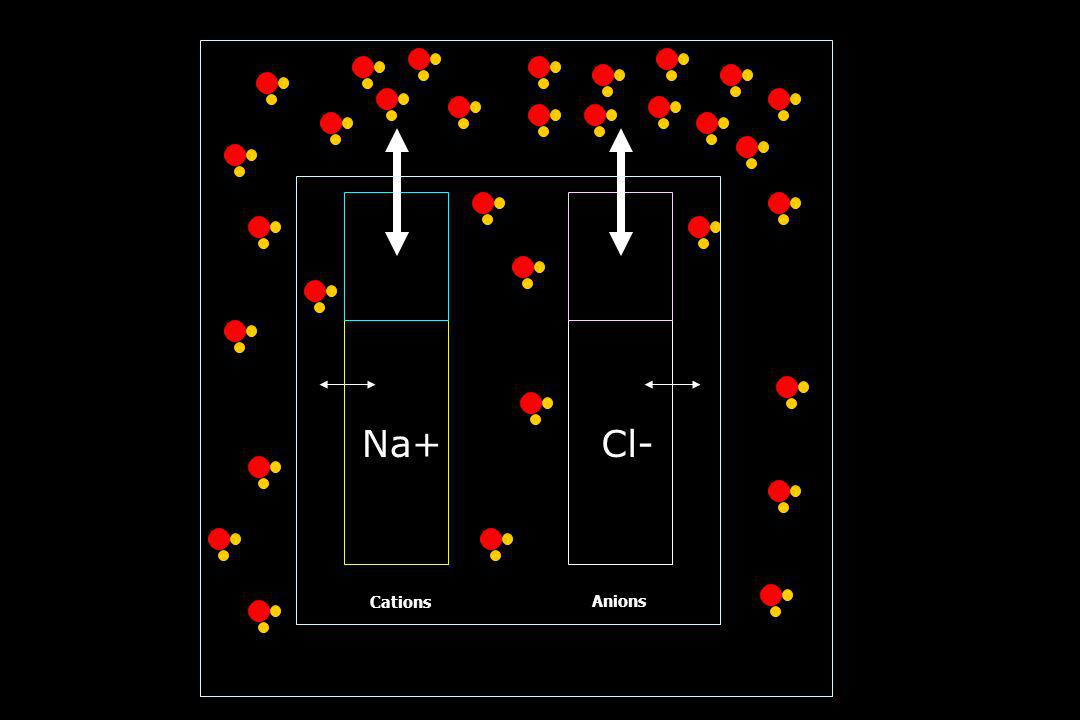 01/04/2017 Na+ Cl- Cations Anions