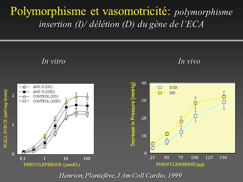 Polymorphisme et vasomotricité: polymorphisme insertion (I)/ délétion (D) du gène de l'ECA