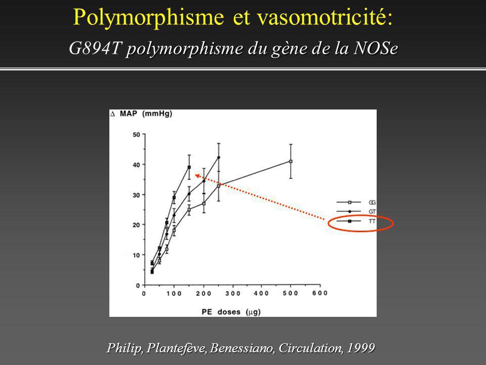 Polymorphisme et vasomotricité: G894T polymorphisme du gène de la NOSe