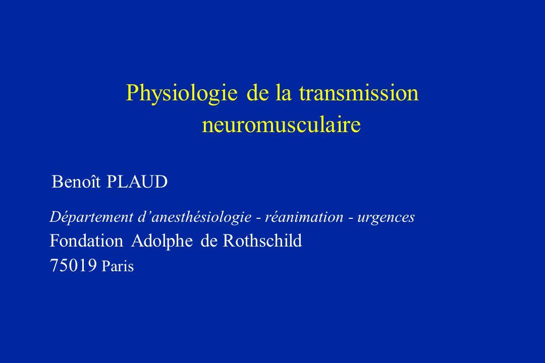 Physiologie de la transmission neuromusculaire