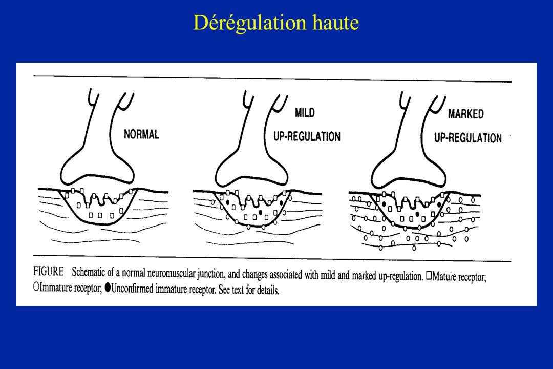 Dérégulation haute
