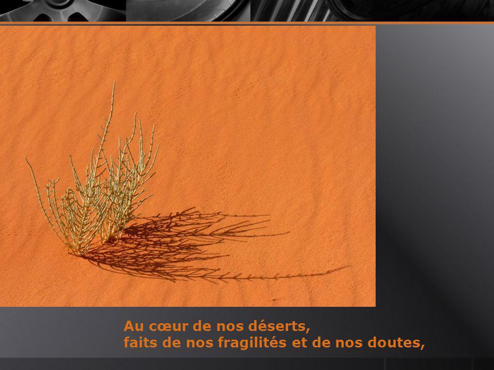 Au cœur de nos déserts, faits de nos fragilités et de nos doutes,