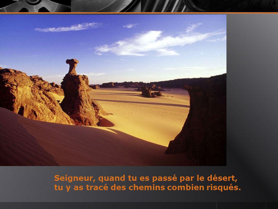 Seigneur, quand tu es passé par le désert, tu y as tracé des chemins combien risqués.
