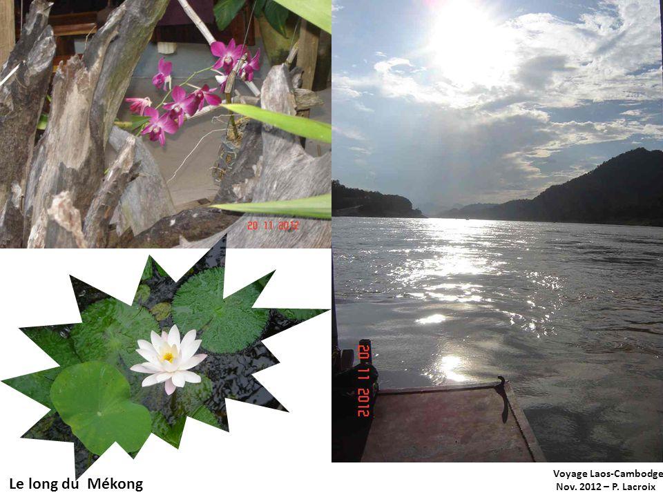 Voyage Laos-Cambodge Nov. 2012 – P. Lacroix Le long du Mékong