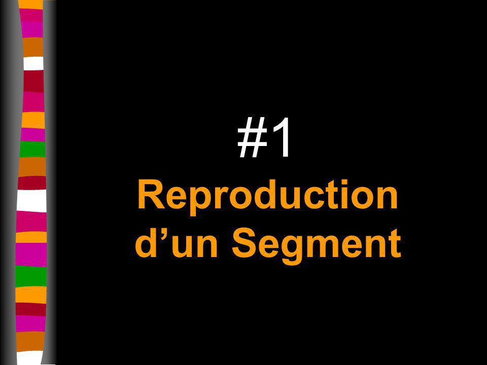 #1 Reproduction d'un Segment