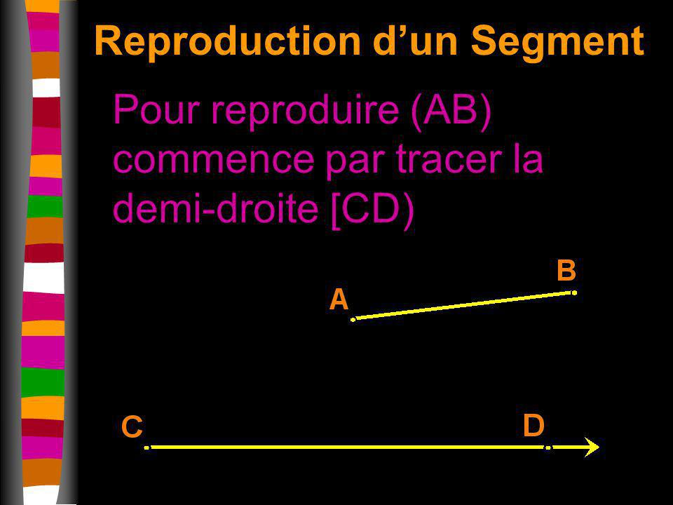 Reproduction d'un Segment