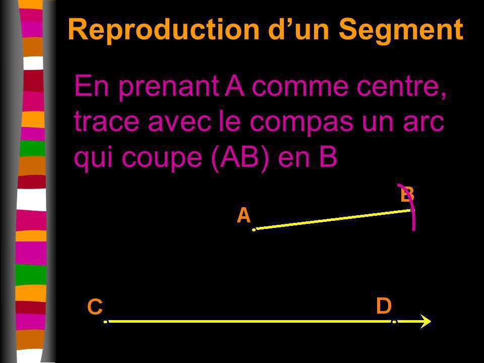 Reproduction d'un Segment
