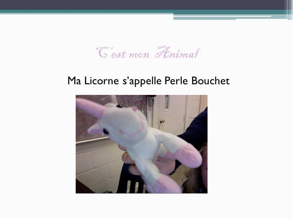 Ma Licorne s'appelle Perle Bouchet