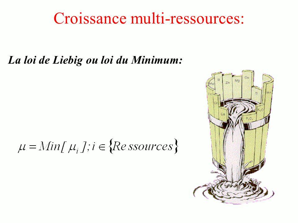Croissance multi-ressources: