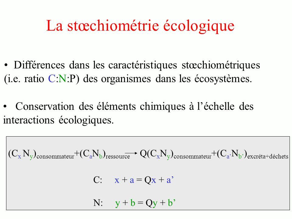 La stœchiométrie écologique