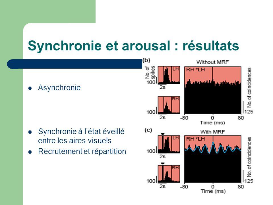 Synchronie et arousal : résultats