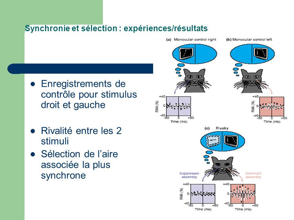 Synchronie et sélection : expériences/résultats