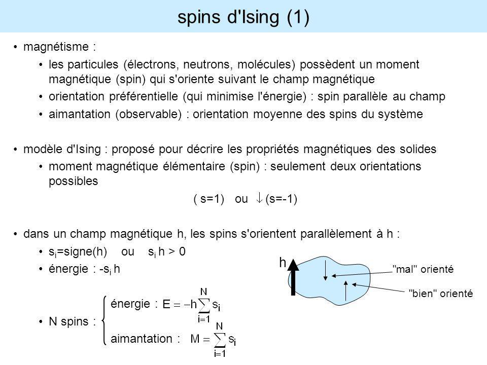 spins d Ising (1) h magnétisme :