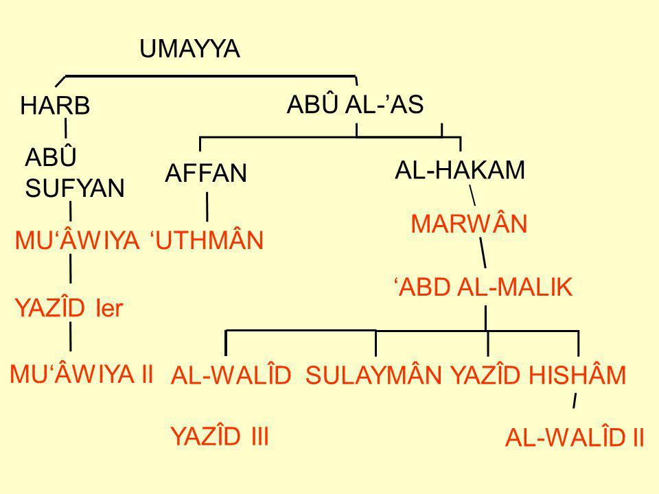 UMAYYA HARB. ABÛ AL-'AS. ABÛ. SUFYAN. AFFAN. AL-HAKAM. MARWÂN. MU'ÂWIYA. 'UTHMÂN. 'ABD AL-MALIK.