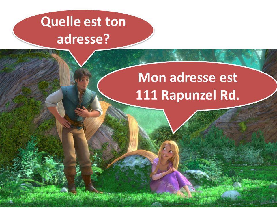 Quelle est ton adresse Mon adresse est 111 Rapunzel Rd.