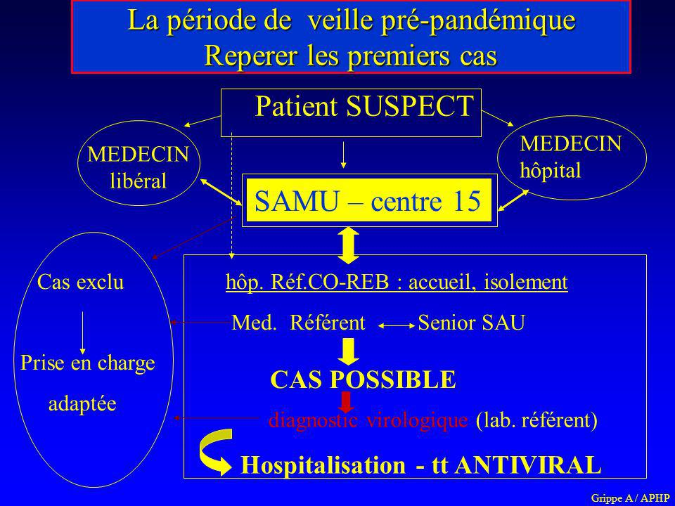 La période de veille pré-pandémique Reperer les premiers cas