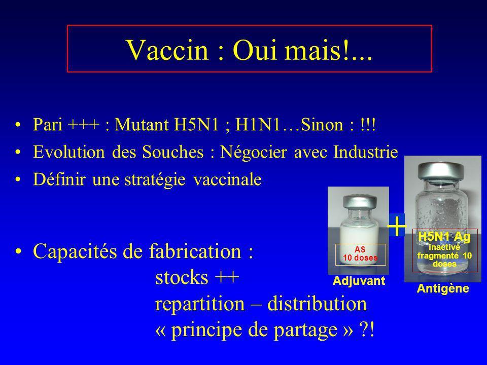 H5N1 Ag inactivé fragmenté 10 doses