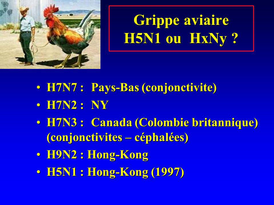Grippe aviaire H5N1 ou HxNy