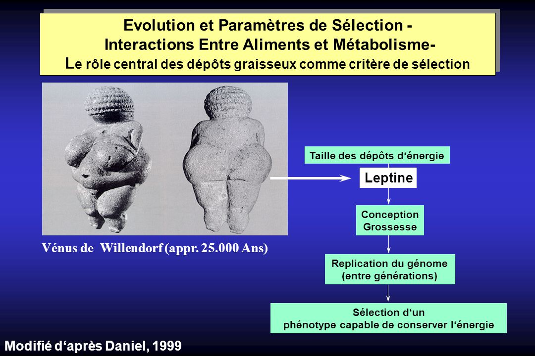 Evolution et Paramètres de Sélection - Interactions Entre Aliments et Métabolisme- Le rôle central des dépôts graisseux comme critère de sélection