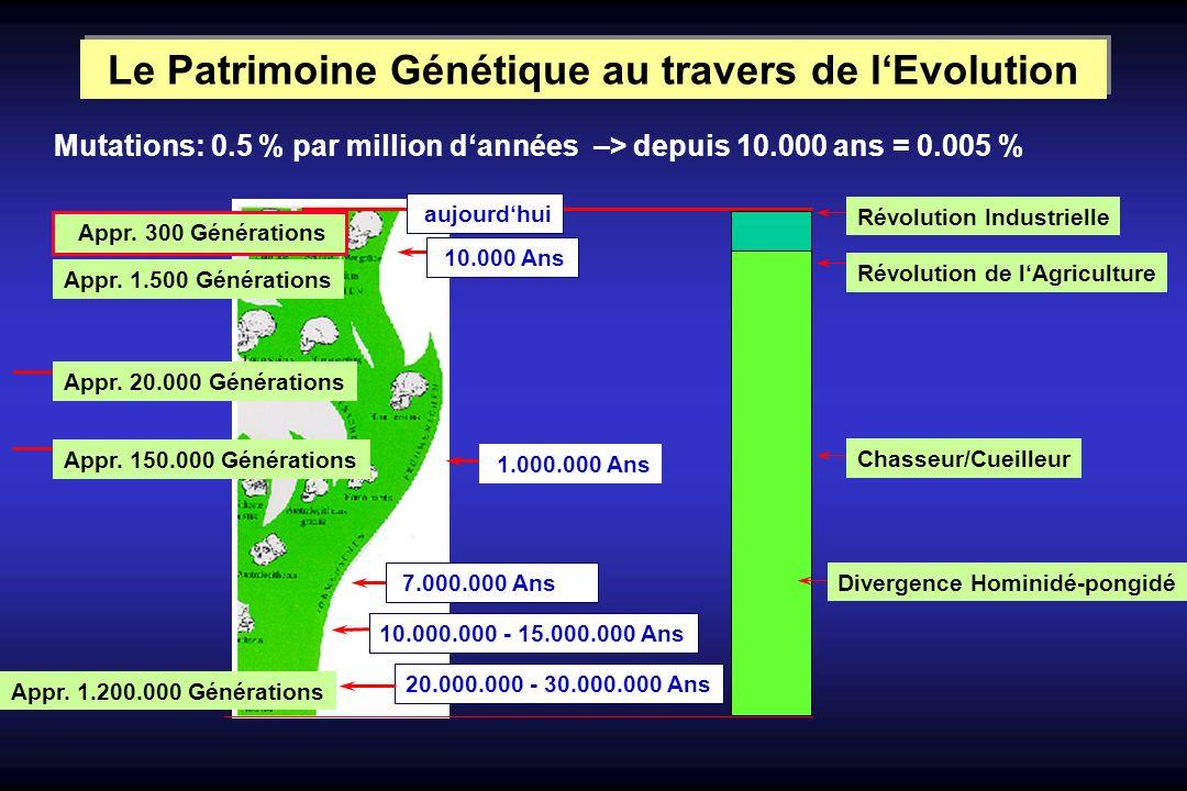 Le Patrimoine Génétique au travers de l'Evolution