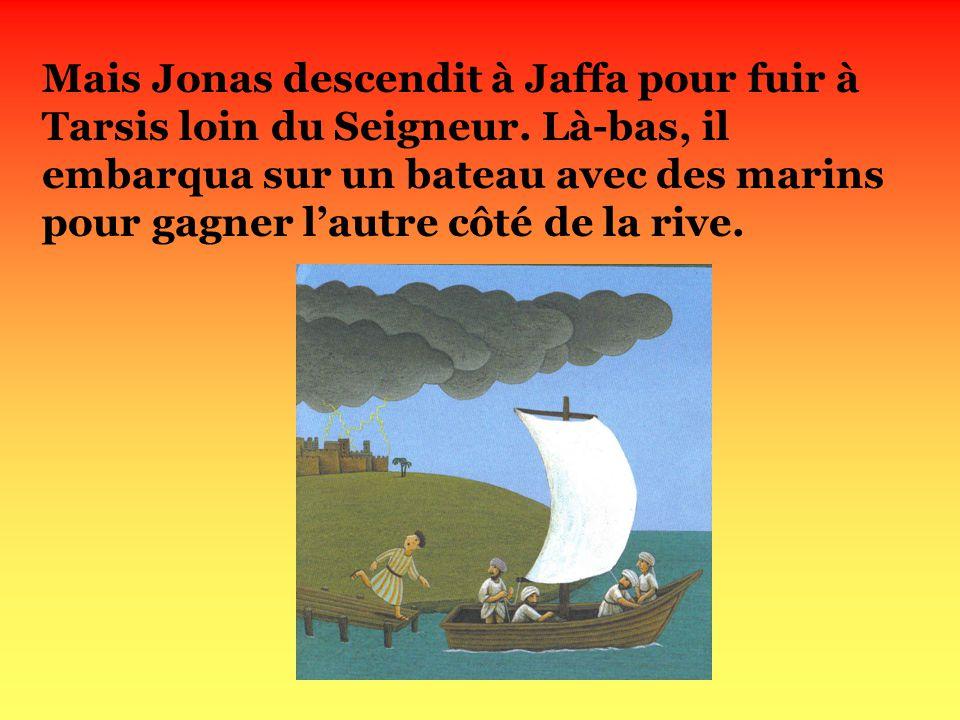 Mais Jonas descendit à Jaffa pour fuir à Tarsis loin du Seigneur