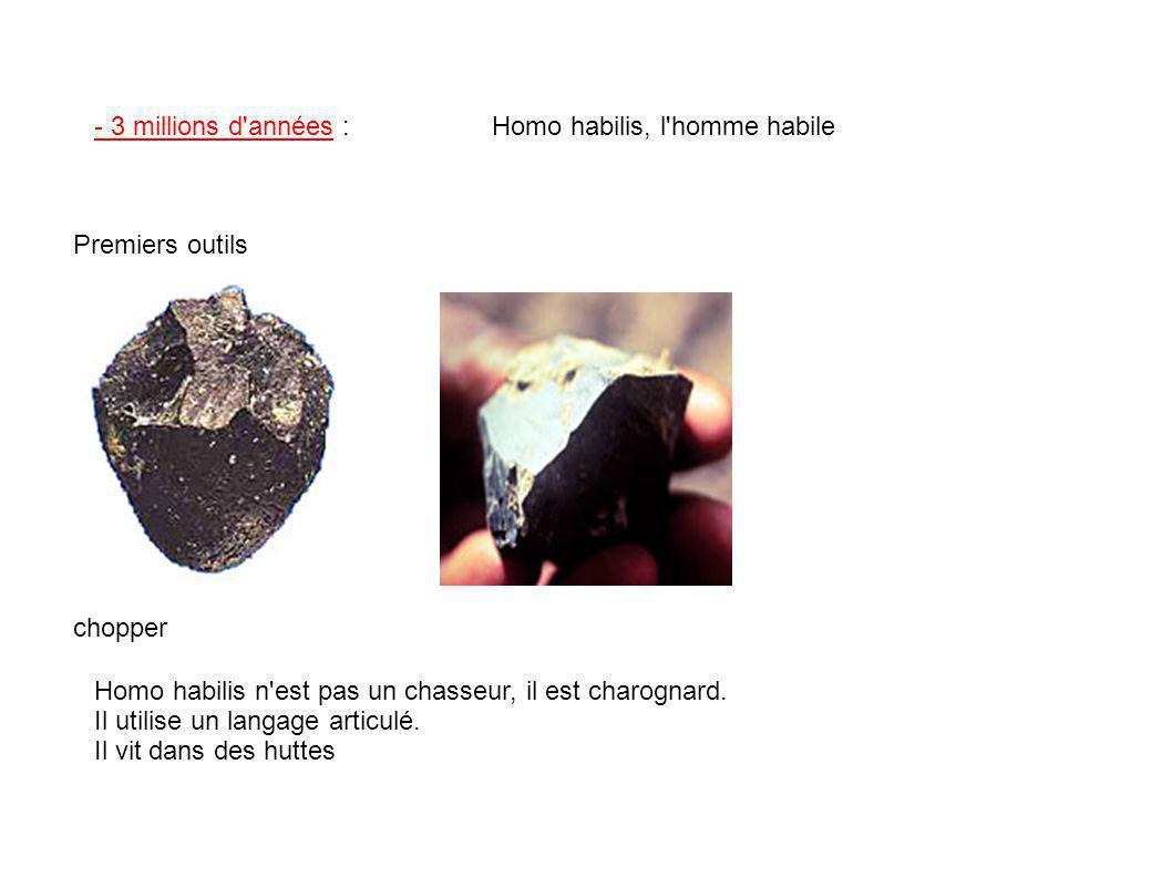 - 3 millions d années : Homo habilis, l homme habile. Premiers outils. chopper. Homo habilis n est pas un chasseur, il est charognard.