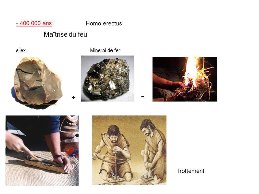 Maîtrise du feu - 400 000 ans Homo erectus + = frottement silex