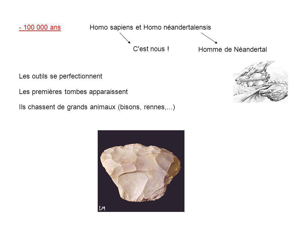 - 100 000 ans Homo sapiens et Homo néandertalensis. C est nous ! Homme de Néandertal. Les outils se perfectionnent.