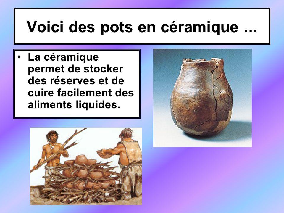 Voici des pots en céramique ...