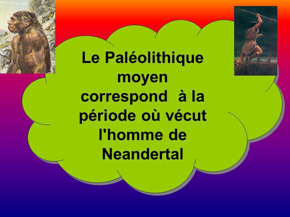 Le Paléolithique moyen correspond à la période où vécut
