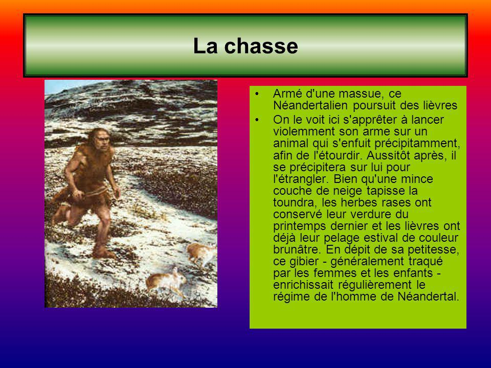 La chasse Armé d une massue, ce Néandertalien poursuit des lièvres