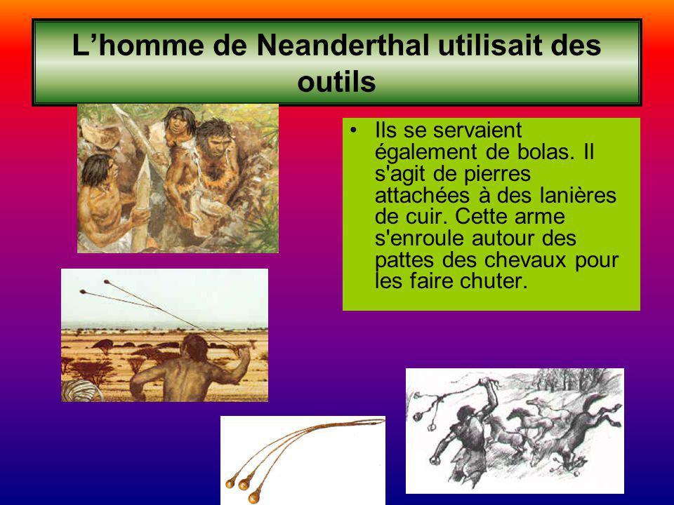 L'homme de Neanderthal utilisait des outils