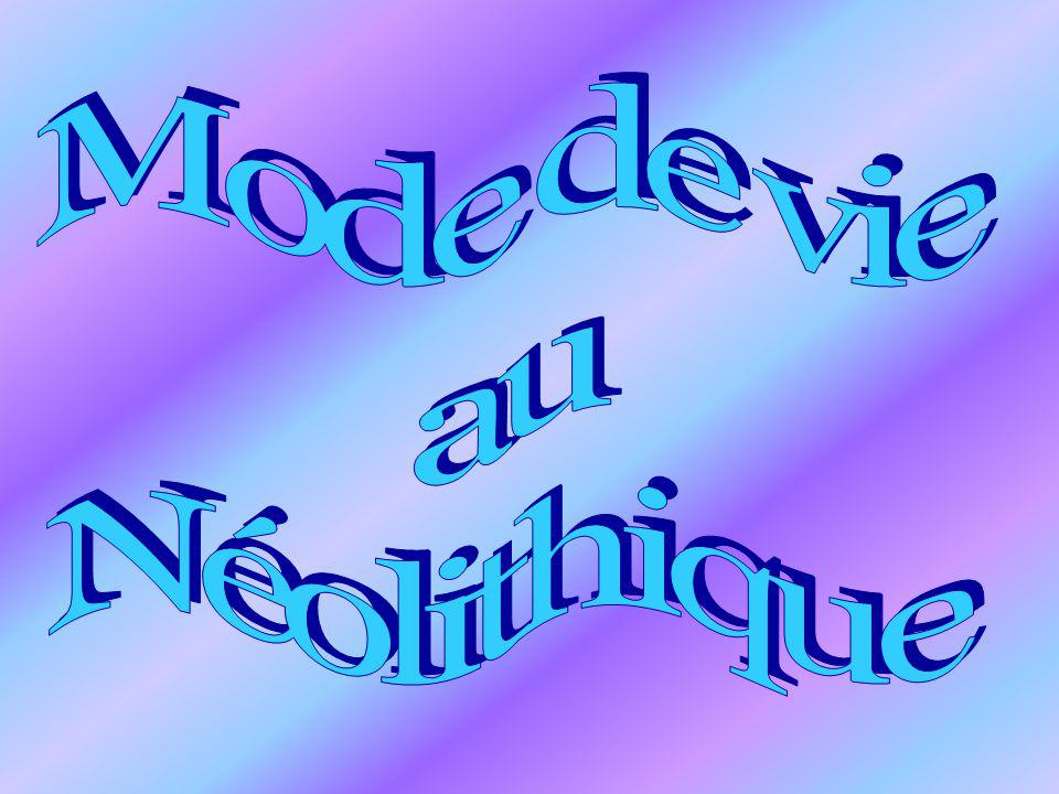 Mode de vie au Néolithique