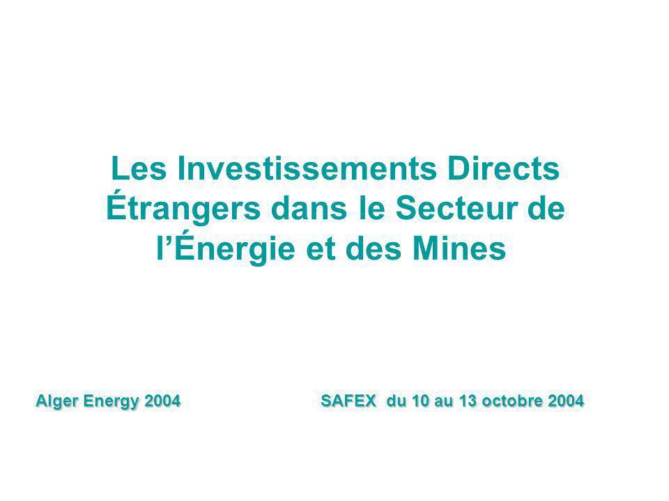 DSI/2004 Les Investissements Directs Étrangers dans le Secteur de l'Énergie et des Mines