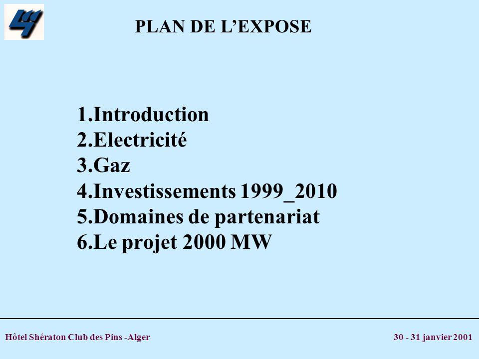 PLAN DE L'EXPOSE 1.Introduction 2.Electricité 3.Gaz 4.Investissements 1999_2010 5.Domaines de partenariat 6.Le projet 2000 MW.